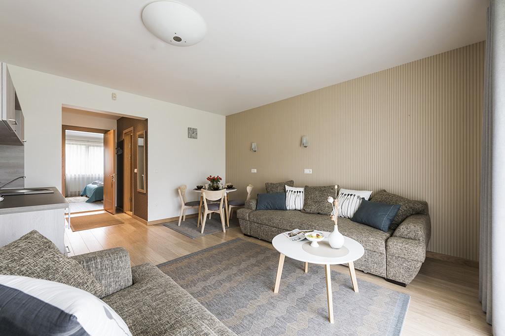 I apartamentas (dviejų kambarių)